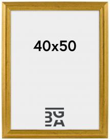Vestkysten ramme Guld 14A 40x50 cm