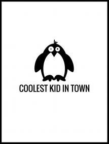 Pingvin Cool
