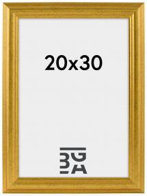 Vestkysten ramme Guld 14A 20x30 cm