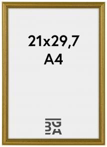 Classic ramme Guld 21x29,7 cm (A4)