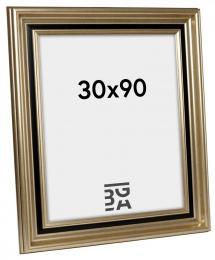 Gysinge Premium Billedramme Sølv 30x90 cm
