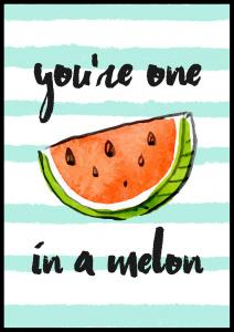 You´re one in a melon