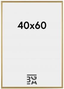 Decoline ramme Guld 40x60 cm