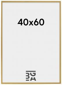Edsbyn Fotoramme Guld 2A 40x60 cm