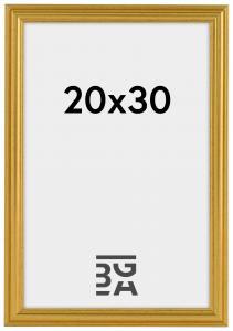 Frigg ramme Guld 20x30 cm