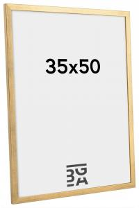 Galant Billedramme Guld 35x50 cm