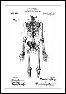 Patenttegning - Anatomisk Skelet I
