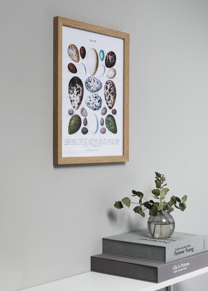 Fiorito Lys Eg 40x50 cm